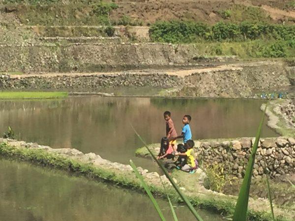 kids-rice-terraces-philippines