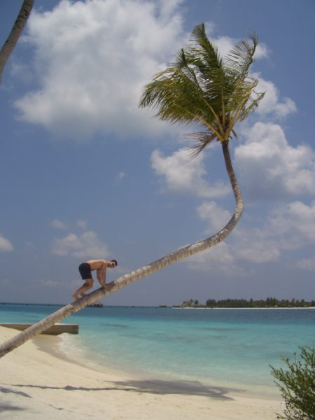 maldives_climbing_tree_man_1