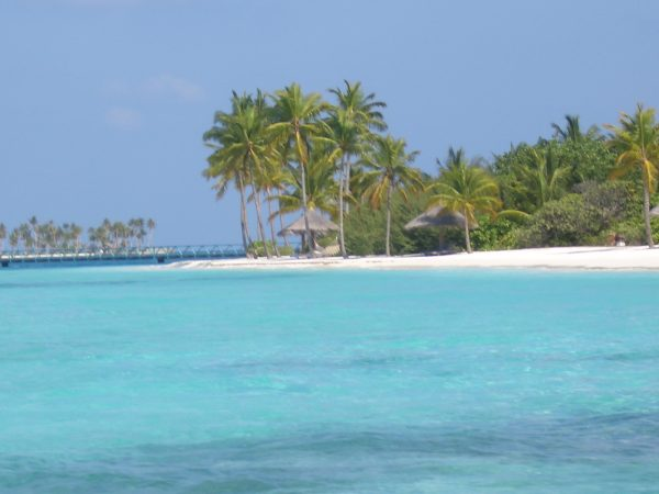 maldives_beach_4