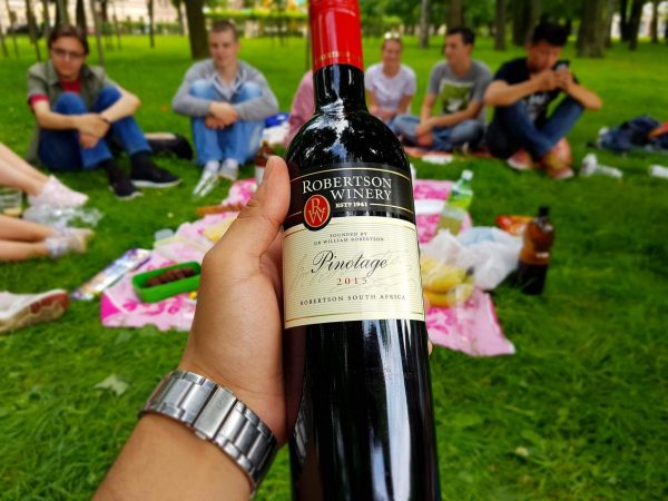 happiness-pic-nic-wine