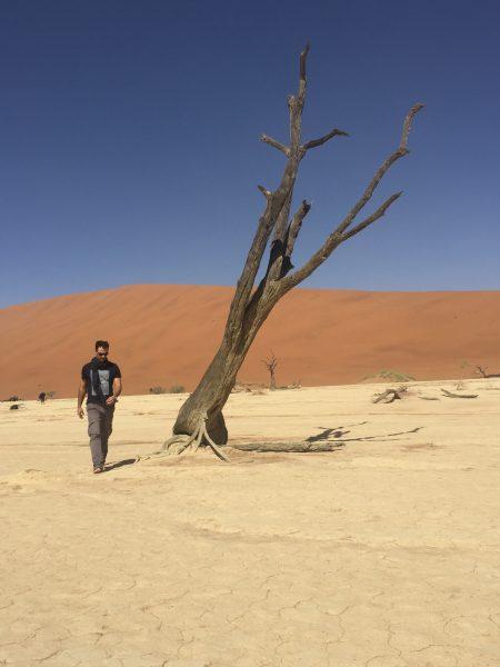 man-sossusvlei-desert-sand-tree